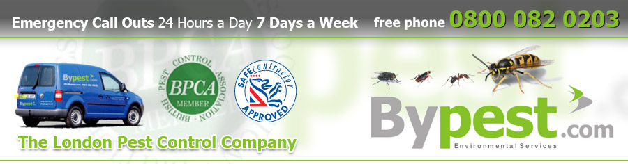 Rodent proofing : Insect proofing : Pest control : Bypest